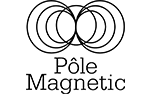 Pole Magnetic
